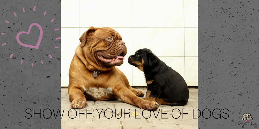 Show your dog-love