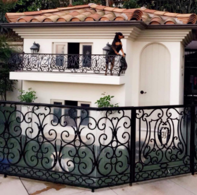 Paris Hilton Dog Mansion 2