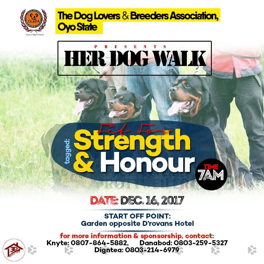 OYO DOG WALK 2